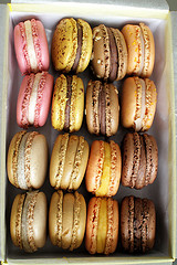 macarons_Midgley_flickr