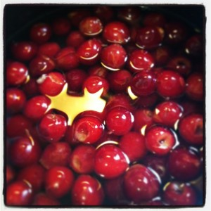 Homemade Maracino Cherries_web