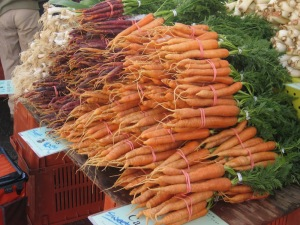 piles of carrots Web