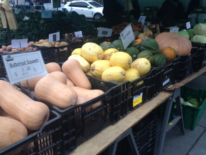 A variety of squash at the farmers market